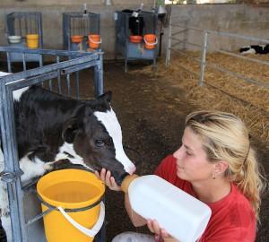 Farming Activities