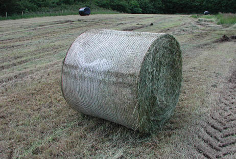 Bale damage 1