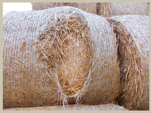Avoid bales bursting
